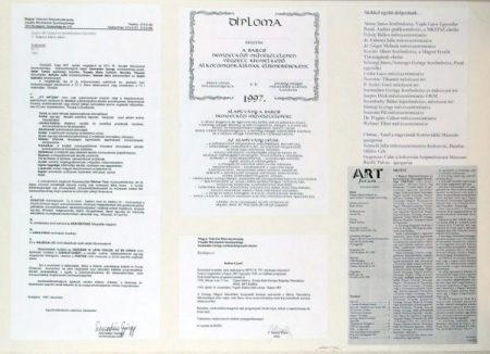 20 éves a Kapos ART - dokumentációs kiállítás